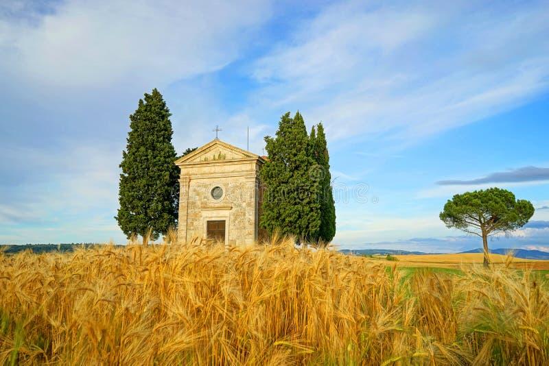 Toscaans landschap royalty-vrije stock afbeelding