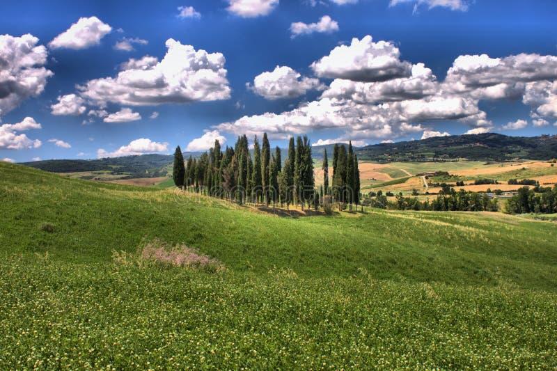 Toscaans landschap met cipresbomen stock afbeeldingen
