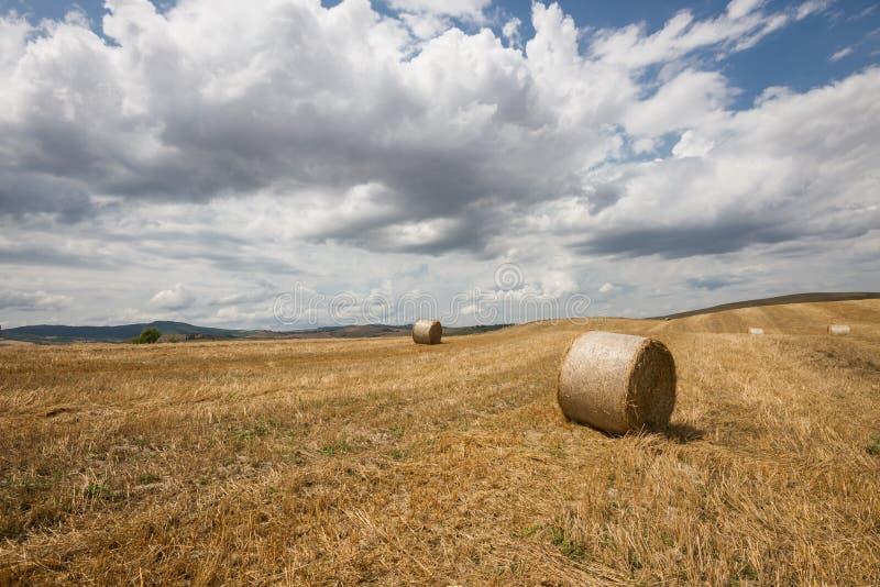 Toscaans landschap in Val-d'Orcia (Siena, Italië) royalty-vrije stock foto's