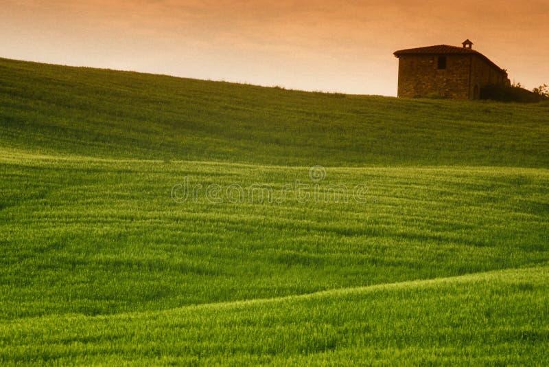 Toscaanse Gebieden royalty-vrije stock foto's