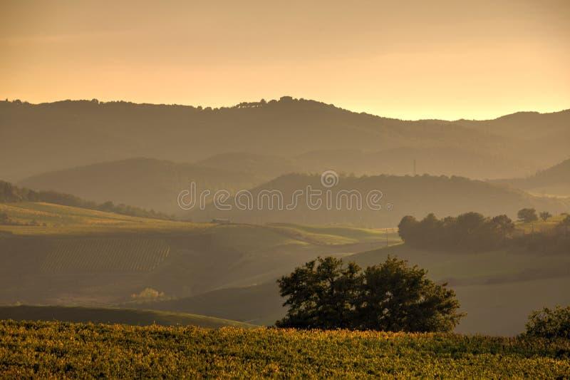 Toscaanse Gebieden stock foto's