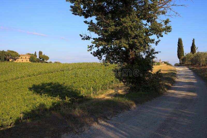 Toscana arkivfoton
