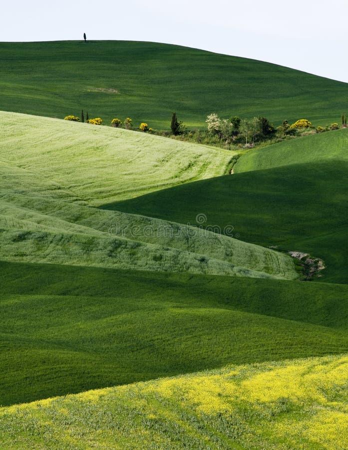 Toscana imagen de archivo libre de regalías