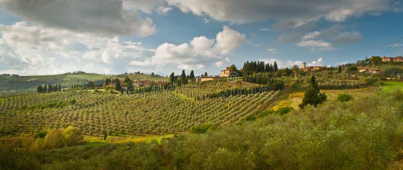 Toscana 库存照片