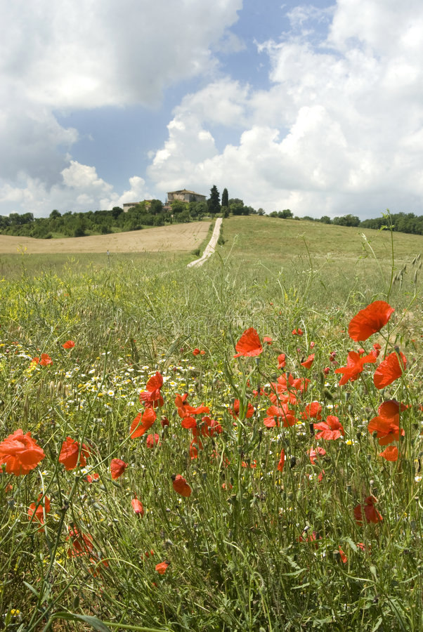 Toscana mágica foto de archivo libre de regalías