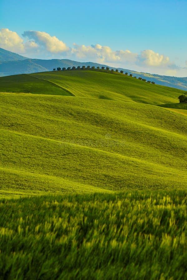 Toscana, paisaje rural de la puesta del sol Granja del campo foto de archivo