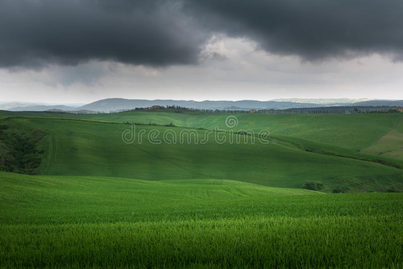 Toscana - panorama del paisaje, colinas y prado, Toscana foto de archivo
