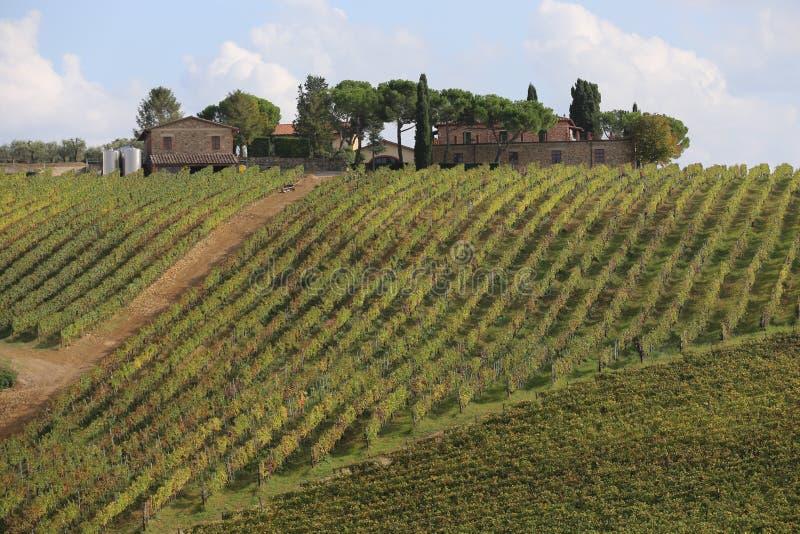 Toscane stockfotos