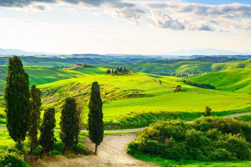 Toscanië, landelijk zonsonderganglandschap Plattelandslandbouwbedrijf, witte weg royalty-vrije stock foto