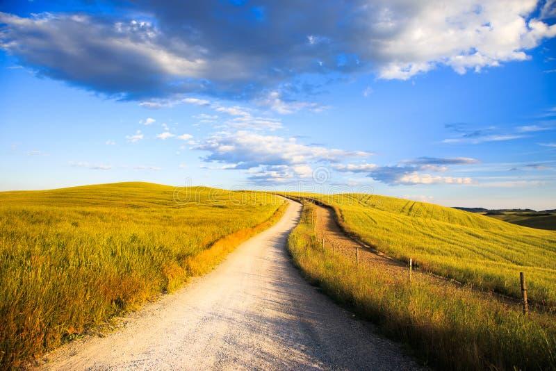 Toscanië, witte weg op rollende heuvel, landelijk landschap, Italië, Eur stock afbeeldingen