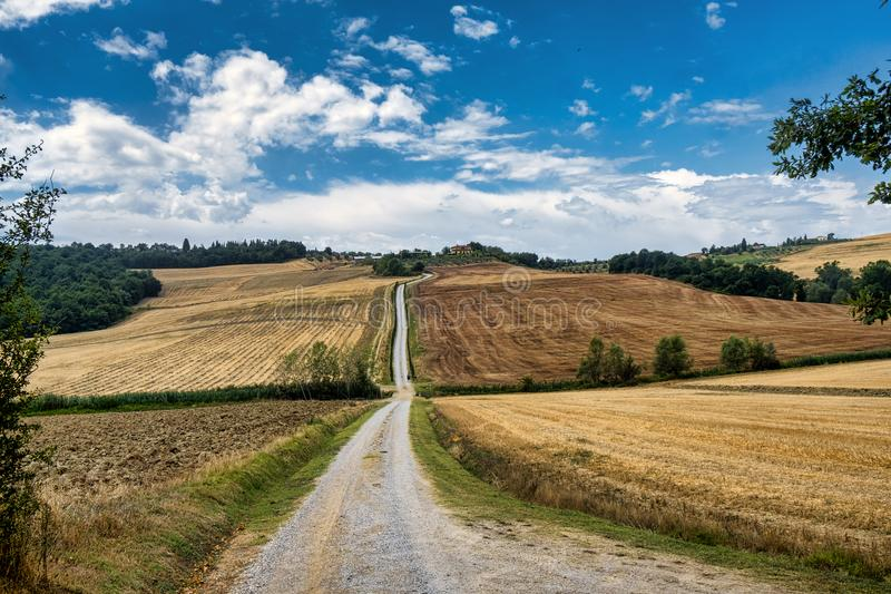 Toskana: die Straße zu Torre ein Castello stockfoto