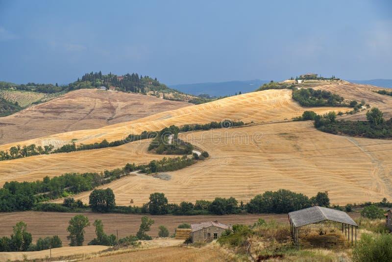 Toskana: die Straße zu Torre ein Castello lizenzfreie stockfotos