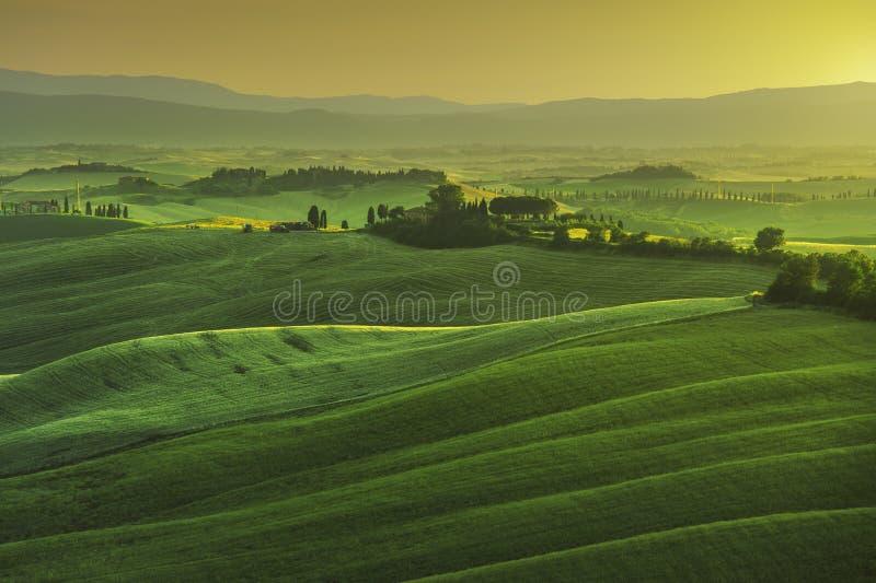 Toskana-Frühling, Rolling Hills auf nebelhaftem Sonnenuntergang Landwirtschaftliche Landschaft lizenzfreie stockfotos