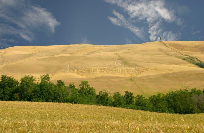 Toskana, Hügel Region der Le-Kreta stockbilder