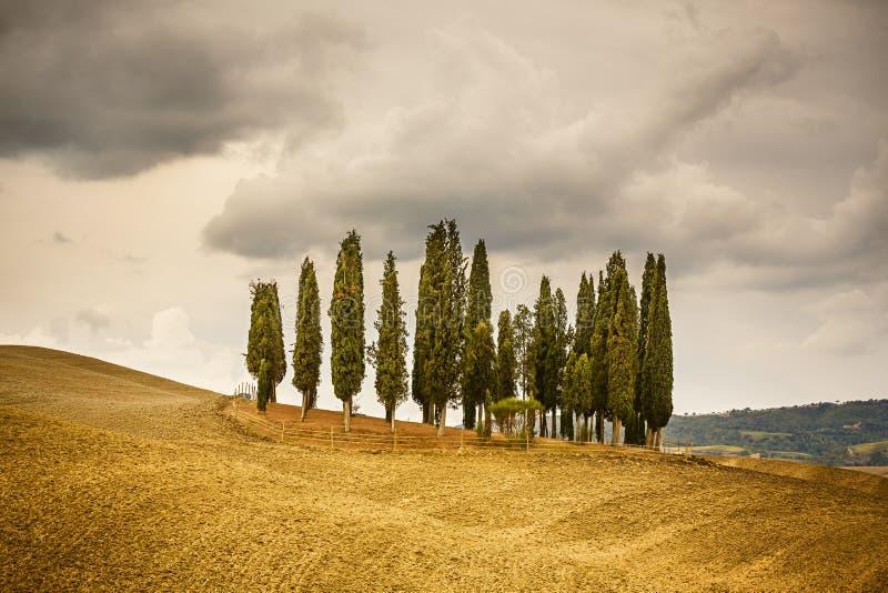 Toskana-Landschaft lizenzfreie stockbilder