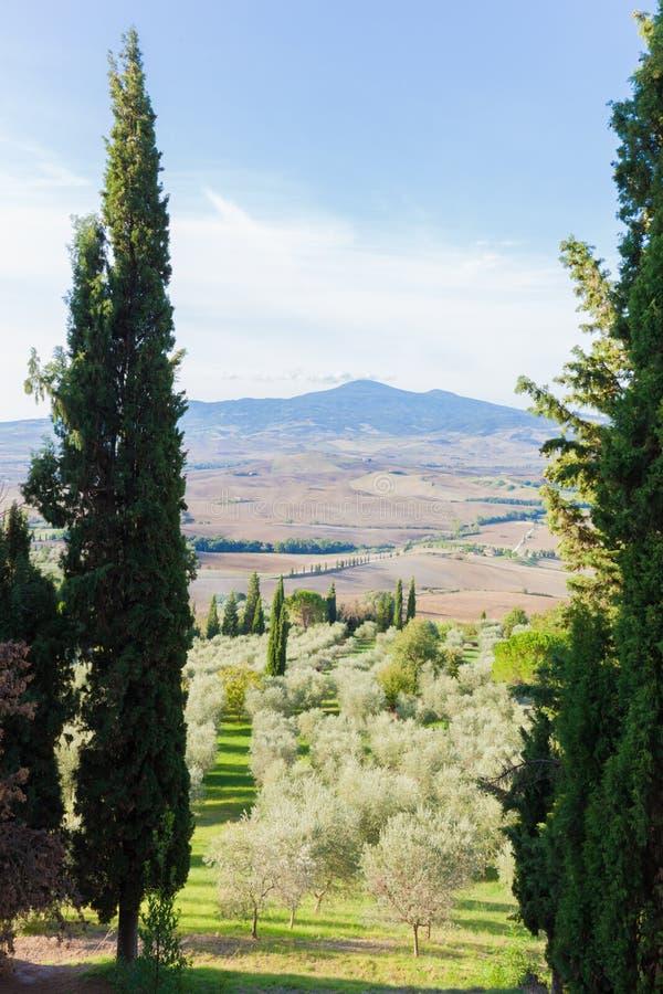Toskana-Landschaft Mit Den Zypressenbäumen, Die Einen Rahmen Machen ...