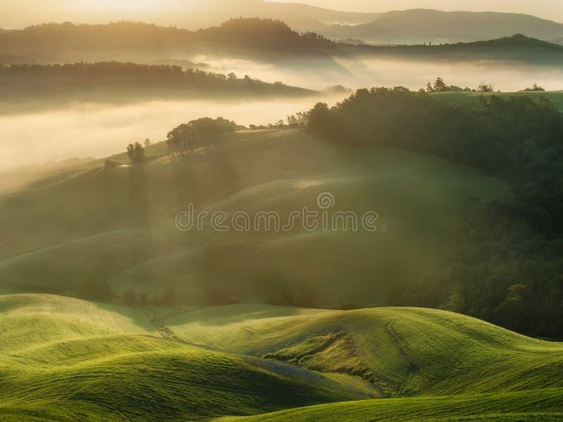Toskanek pola zawijający w mgle, Włochy obrazy royalty free