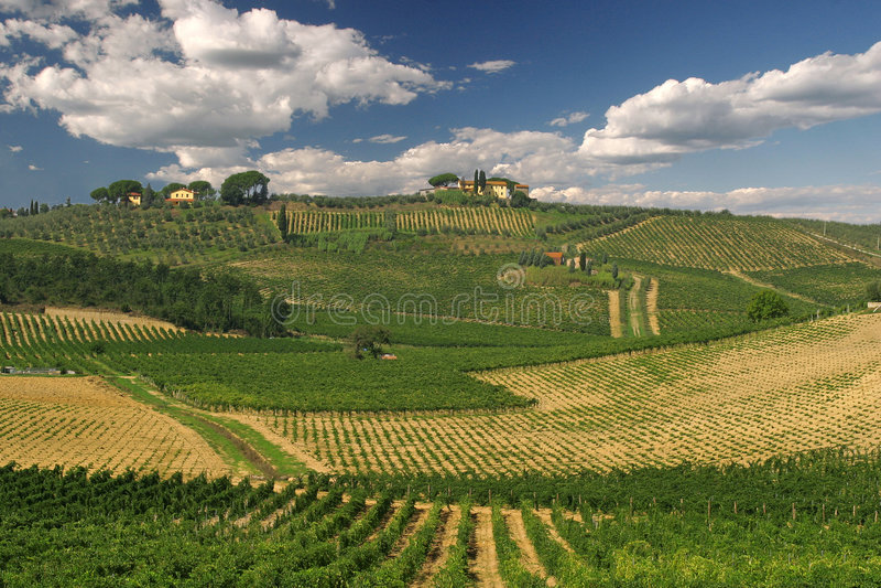 Toskania krajobrazu obraz stock