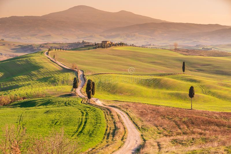 Toskania krajobrazu Val d «Orcia przy zmierzchem zdjęcia royalty free