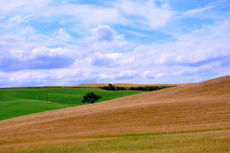 Toskanische Felder, Italien stockfotos