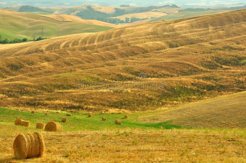 Toskanische Felder, Italien lizenzfreies stockfoto