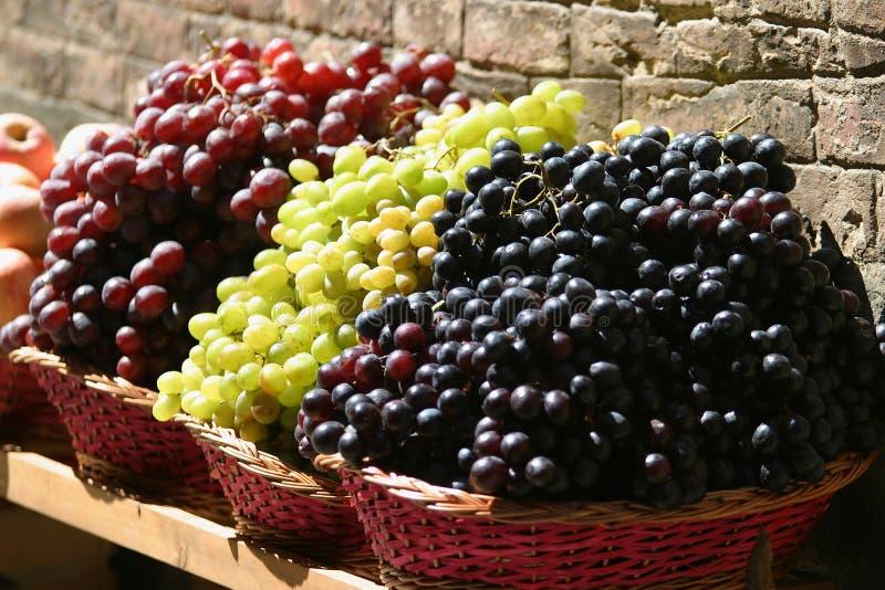 Toskanische Trauben lizenzfreies stockfoto