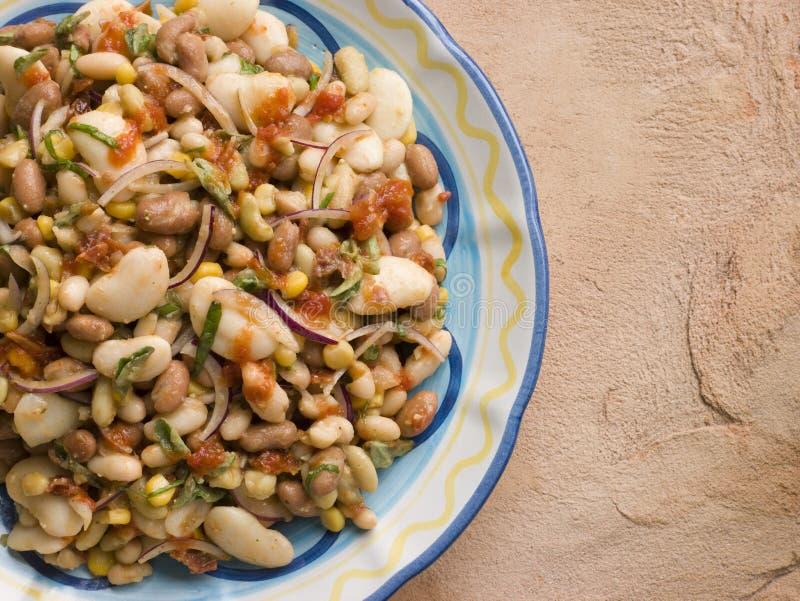 Toskanischer Bohnen-Salat stockbilder