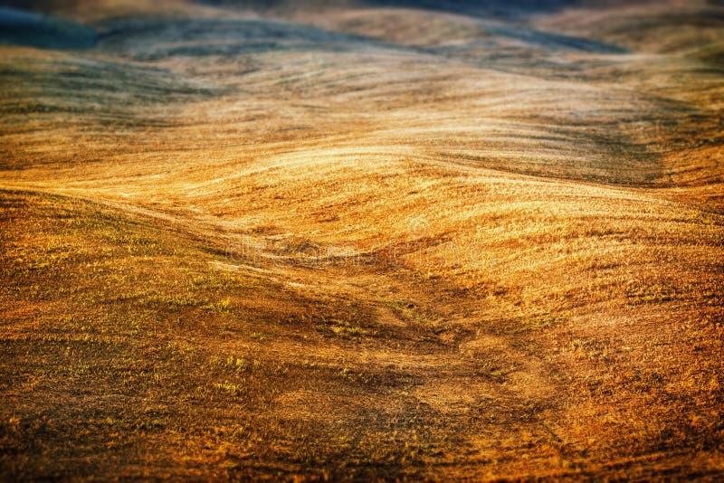 Download Toskanka Krajobraz W Lato Czasie Zdjęcie Stock - Obraz złożonej z włochy, spokój: 28954162