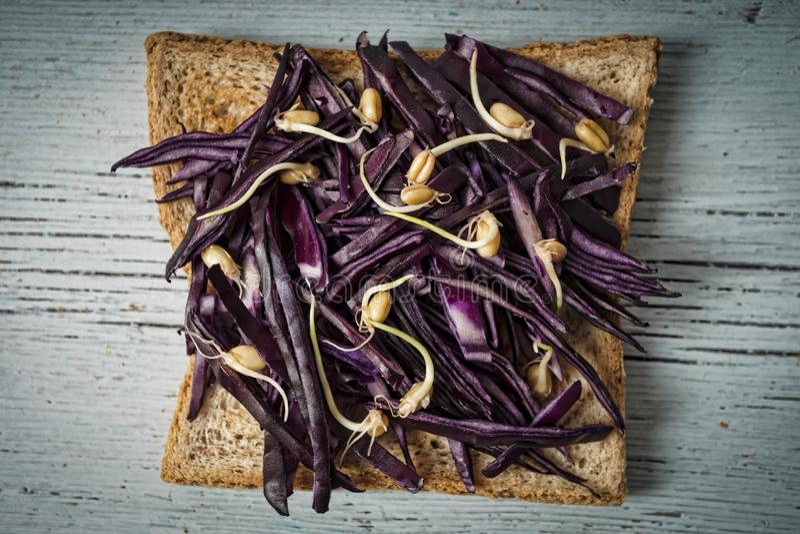 Tost, κόκκινο λάχανο, μικρόβιο σίτου, έξοχα τρόφιμα, υγιές πρόγευμα, Di στοκ εικόνες