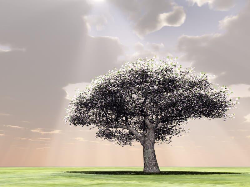 Tot bloei komende boom in de godsstralen stock illustratie