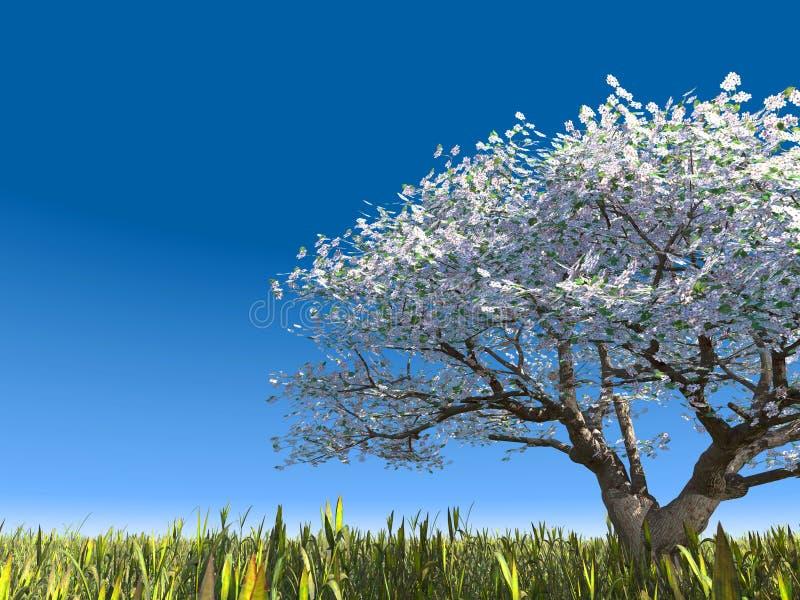 Tot bloei komende boom op een weide stock fotografie