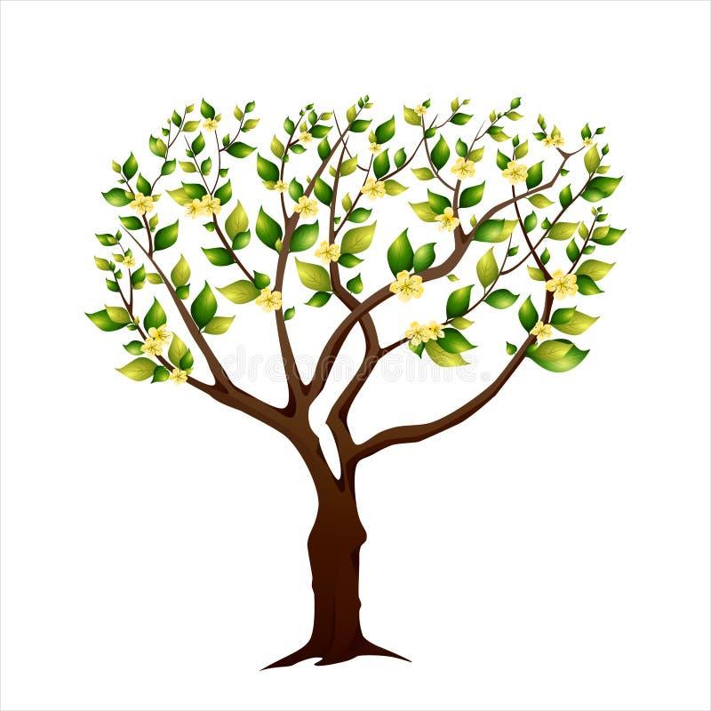 Tot bloei komende de lenteboom royalty-vrije stock afbeeldingen