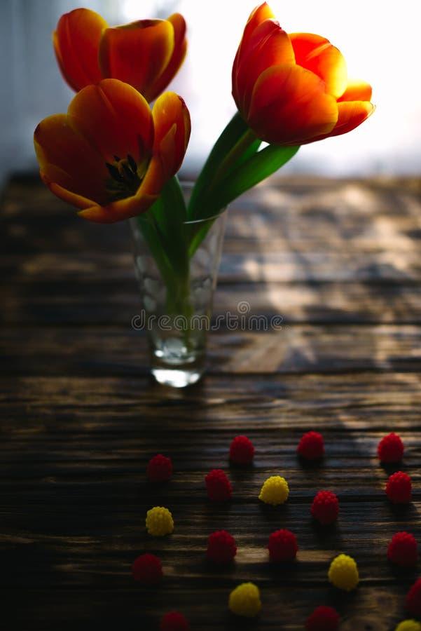 Tot bloei komende rode tulpen op een houten achtergrond met snoepjes stock afbeelding