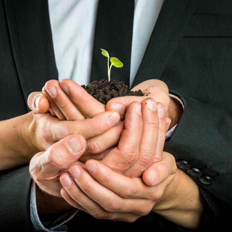 Tot een kom gevormde die handen worden verenigd om een groene spruit te beschermen stock foto's