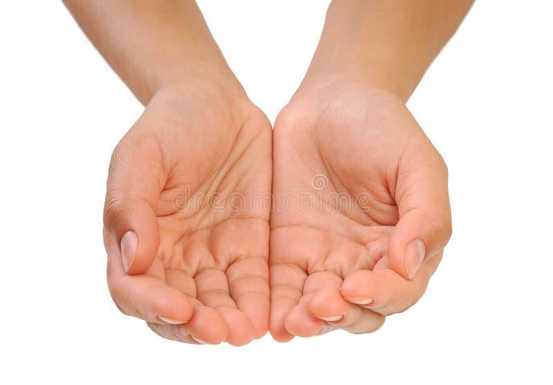 Tot een kom gevormde handen van jonge geïsoleerde. vrouw - royalty-vrije stock afbeeldingen