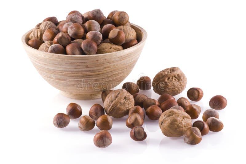 Totaal noten. stock afbeelding