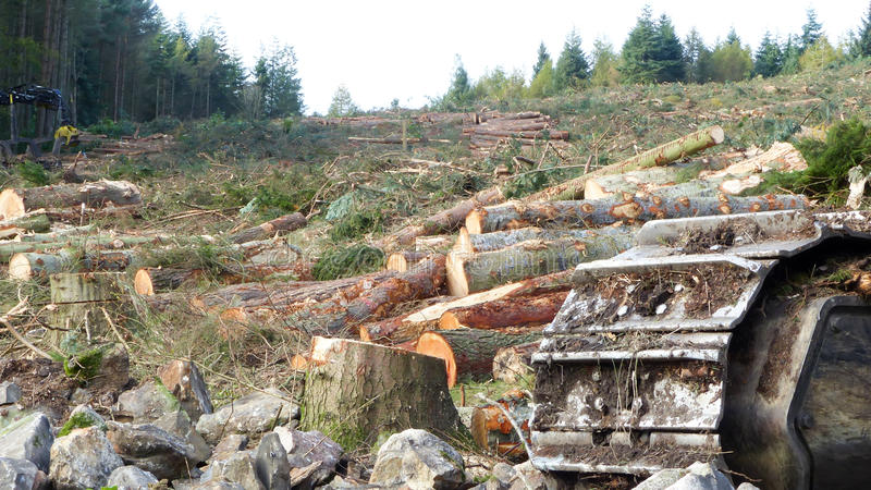 Total destruction of environment with machinery concept. Trees destroyed by machinery - human destructive impact on environment concept royalty free stock images