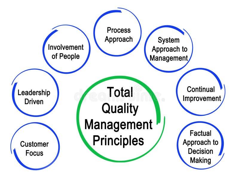 Total Quality Management Principles vector illustration