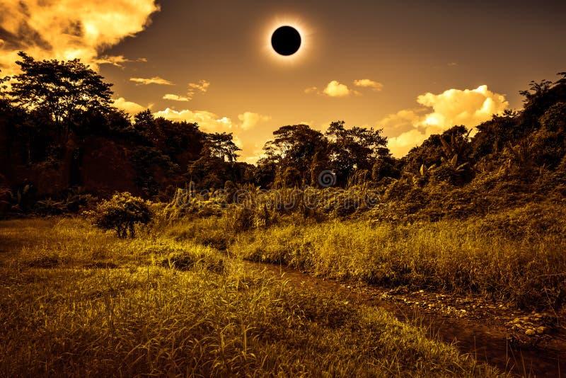 Scientific natural phenomenon. Total solar eclipse glowing on sk. Total solar eclipse glowing on sky above wilderness in forest. Amazing scientific natural stock photos