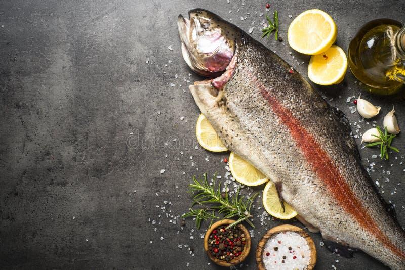 Totalité saumonée crue de poissons avec des ingrédients pour des cookings sur le noir photographie stock libre de droits
