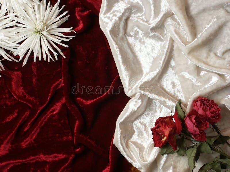 Tote Blumen auf Samthintergrund stockfotografie