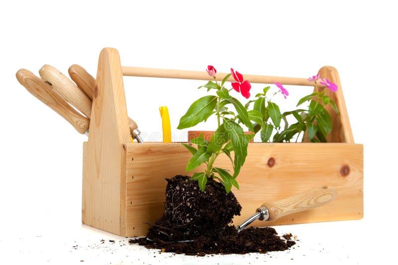 tote del giardiniere s della casella immagine stock libera da diritti