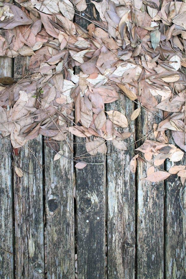 Tote trockene Blätter auf verwitterten grauen Holzbrettern mit Platz für die Kopie lizenzfreie stockfotos