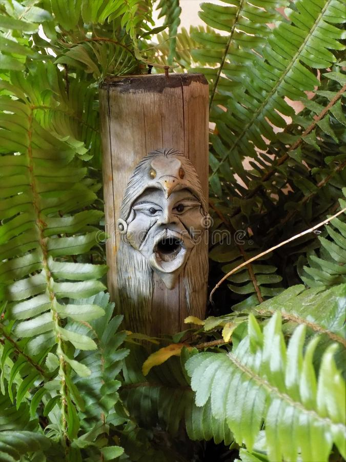Totem bland ormbunkar - botanik och konst royaltyfria foton