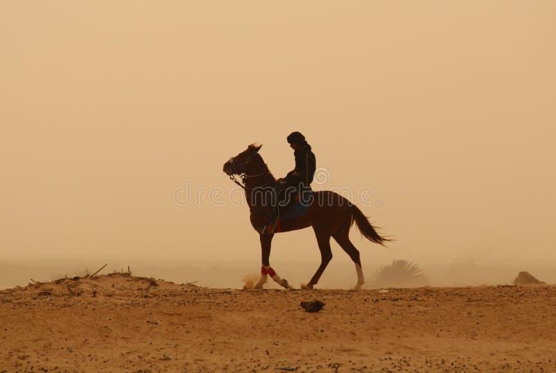 Touareg, das über das Sahara wandert stockfotos
