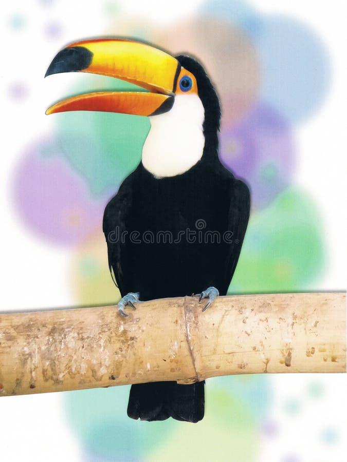 Toucan με ζωηρόχρωμο Watercolor Backgroud στοκ φωτογραφία με δικαίωμα ελεύθερης χρήσης