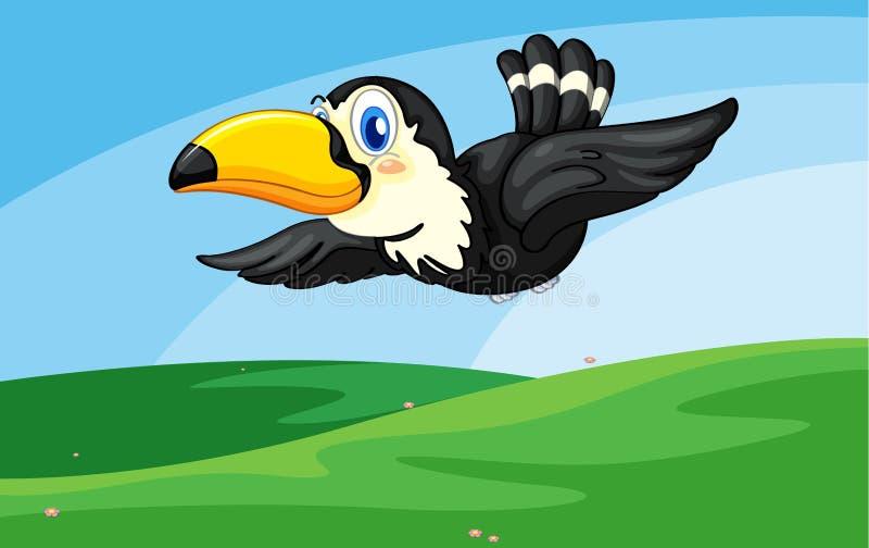 toucan διανυσματική απεικόνιση