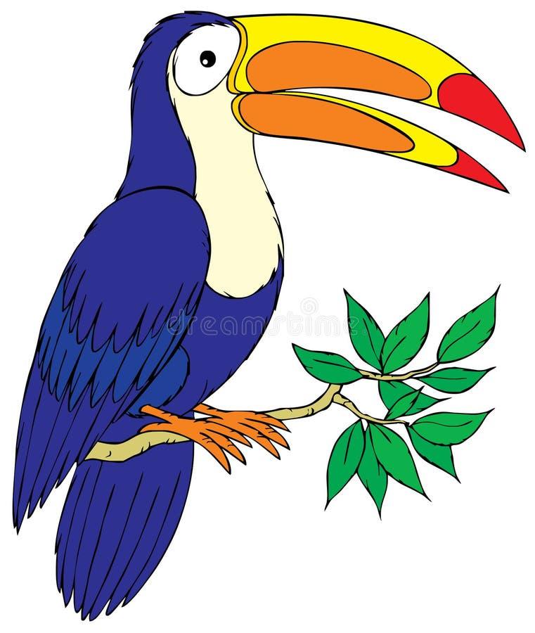 Toucan illustrazione vettoriale