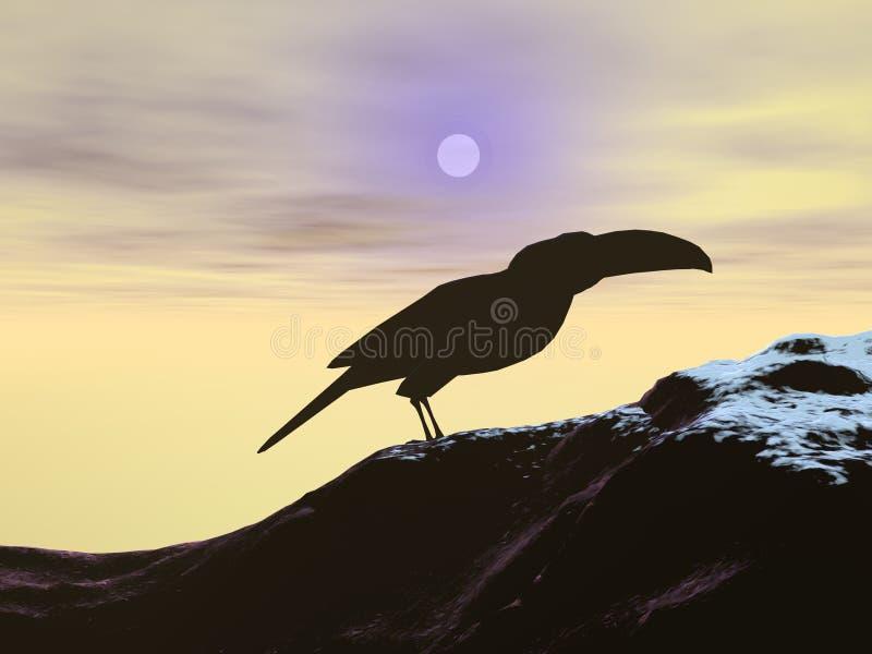 toucan arkivfoto