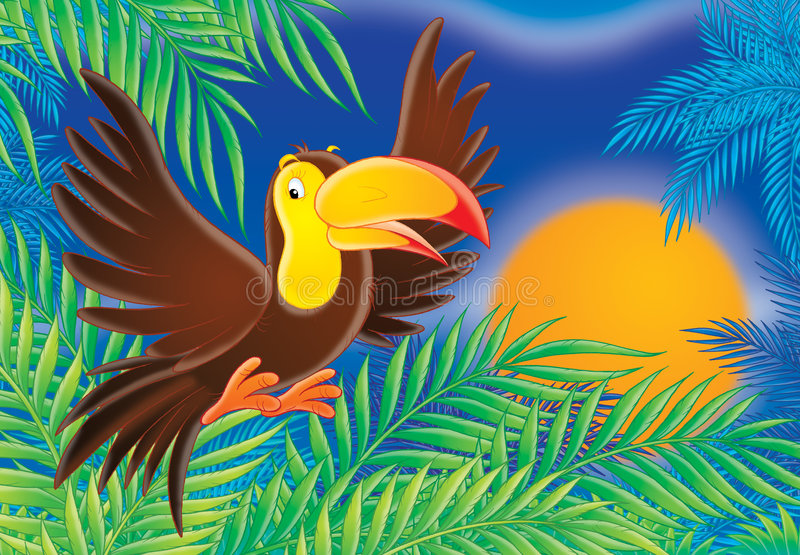 Toucan ilustração stock